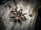 Anise Pendant in Polished Bronze Steel
