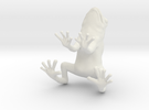 frog 2cm in White Strong & Flexible