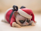 Grumpy Cat - Christmas Edition in Full Color Sandstone