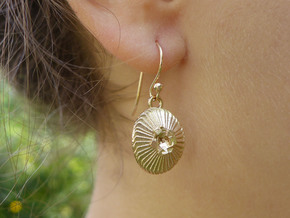 Coccolithus Earrings  in Raw Bronze