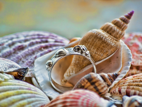 Sea Shell Ring 1 - US-Size 6 1/2 (16.92 mm) in Polished Silver