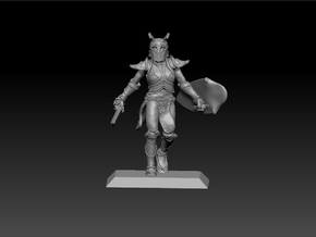 Elf Warrior 35mm Nº1 in Frosted Ultra Detail