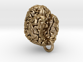 Human brain in Polished Gold Steel