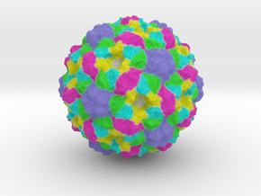 Bacteriophage Procapsid (Closed) (1CD3) in Full Color Sandstone