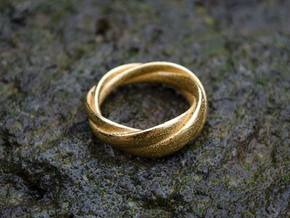 Torusring in Polished Gold Steel