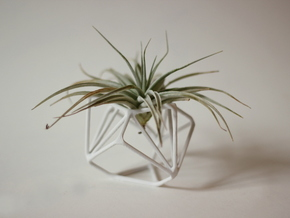 Ruba Rombic Edge Air Plant Vase in White Strong & Flexible