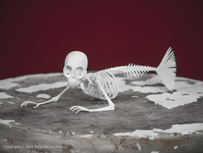 Fiji Mermaid Skeleton in White Strong & Flexible