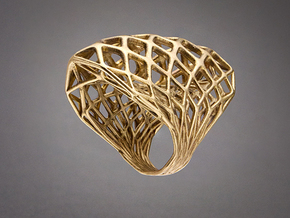 Ring 002 in Raw Bronze