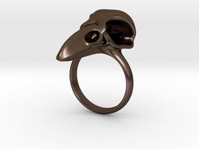 C. corax: skull in Polished Bronze Steel
