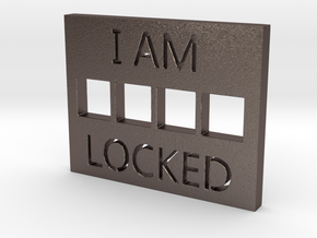 LOCKED in Stainless Steel