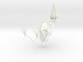 Bare-Fronted Hoodwink Bird Skeleton in White Strong & Flexible Polished