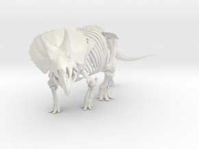 Triceratops horridus skeleton 1:48 scale in White Strong & Flexible
