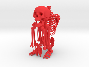 Mr Bones -- Customizable Articulated Skeleton in Red Strong & Flexible Polished