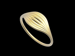 Flow Ring 01  in Matte Gold Steel