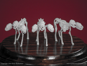 Cerberus Skeleton 32mm in Frosted Ultra Detail