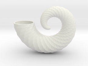 nautilus shell 6 inch in White Strong & Flexible