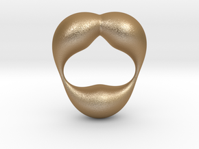 0055 Antisymmetric Torus  (p=2.5) #004 in Matte Gold Steel
