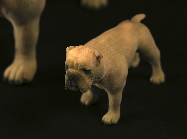Bulldog S Full Color Sandstone 3d printed L, S size