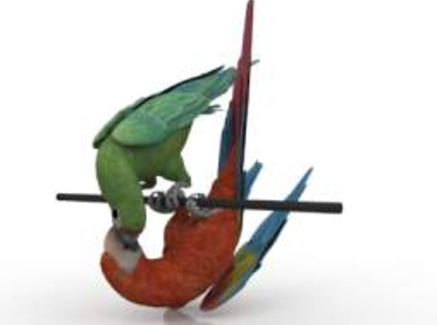 Macaw & Parrot 3d printed Kiss