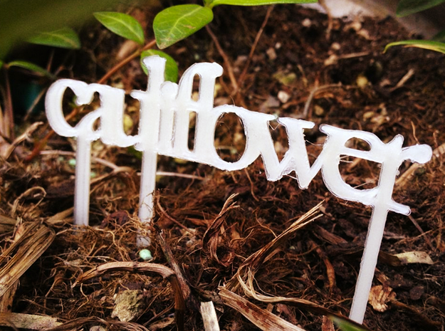 Cauliflower - Garden Sign 3d printed