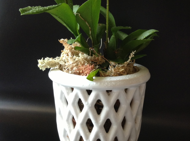 "Epiphyte Planter ""Callebaut"" 3d printed Printed in glazed ceramics."