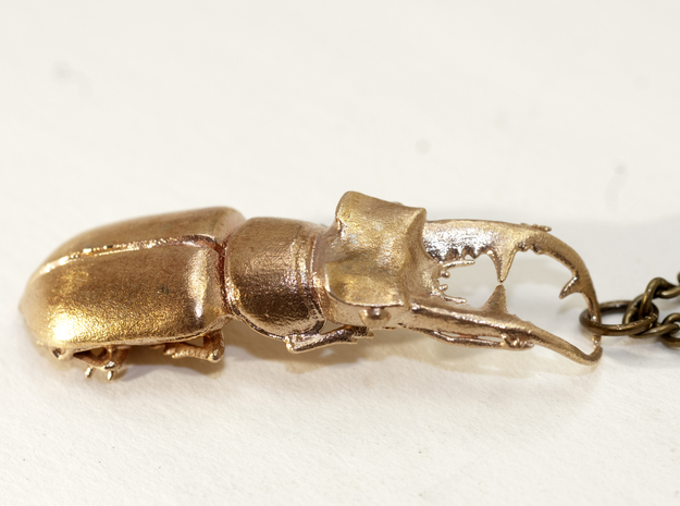 Stag Beetle with Closed Jaws -- pendant