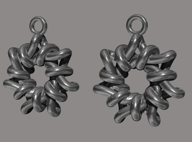 Torus1 Earrings 3d printed render