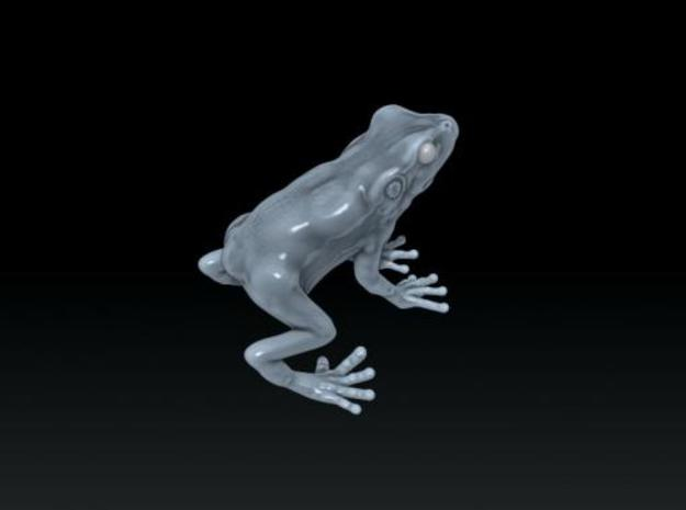 frog on leaf 3d printed Description