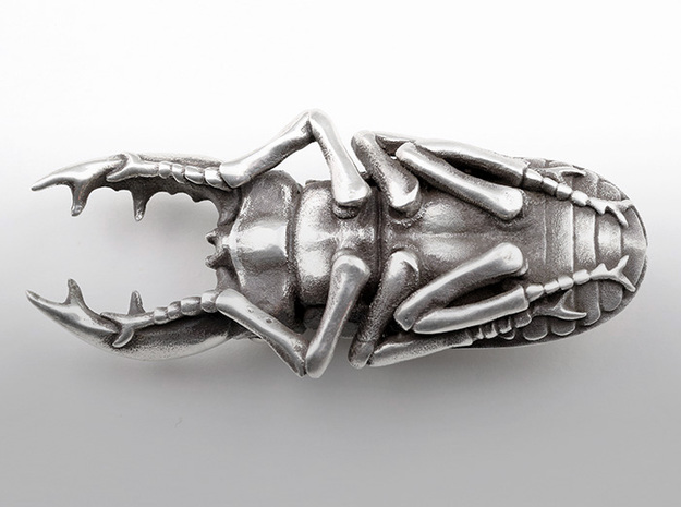 Large Silver Stag Beetle 3d printed