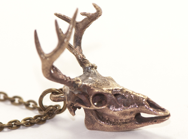 Buck Skull With Pendant Loop