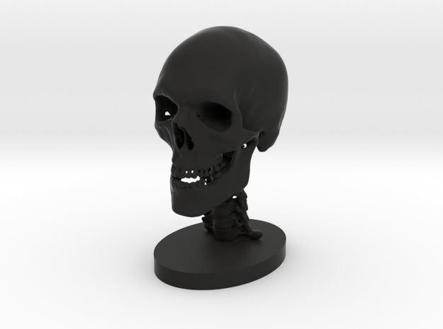 1/4 Scale Human Skull 3d printed