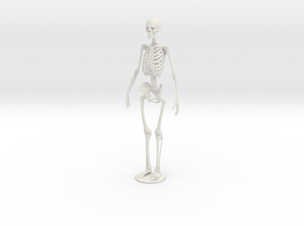 Skeleton new