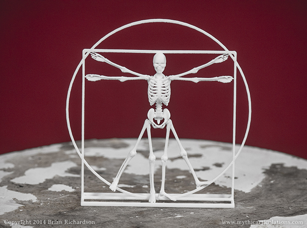 Vitruvian Man Skeleton