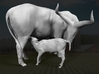Ankole-Watusi 1:22 Mother and Calf 3d printed