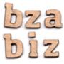 David_Bizer