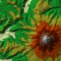 MapBliss