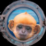 Model_Monkey