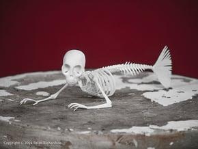 Feejee Mermaid Skeleton in White Natural Versatile Plastic