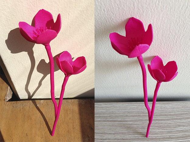 Cherry Blossom in Pink Processed Versatile Plastic