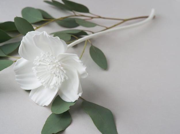 Poppy No. 2 in White Natural Versatile Plastic