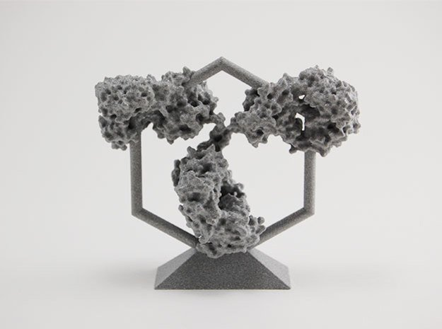 Antibody - IgG - Trophy in White Processed Versatile Plastic