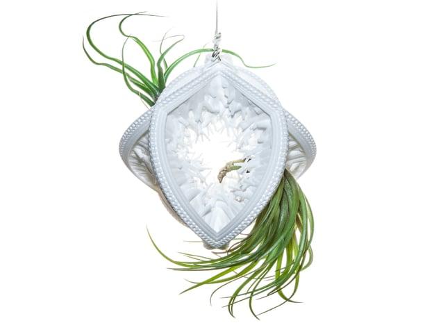 Radiolaria Papillae Planter in White Natural Versatile Plastic