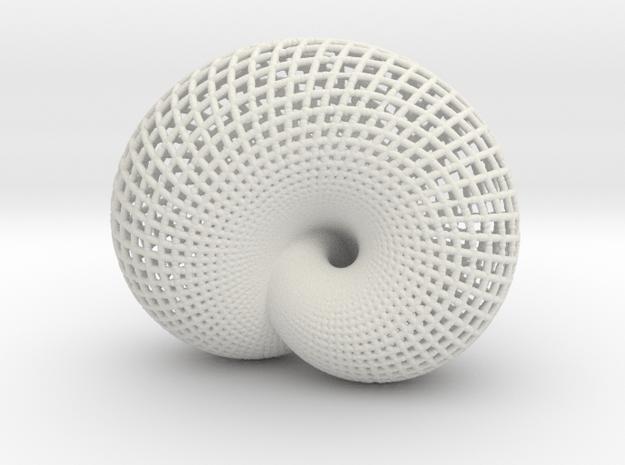 Lawson Klein bottle in White Natural Versatile Plastic