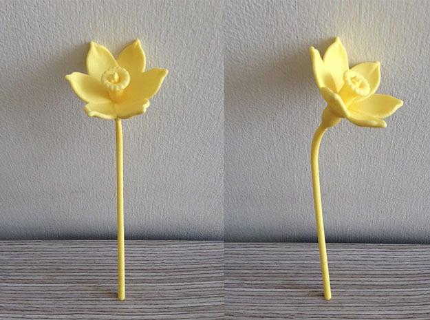 Narcissus Flower in Yellow Processed Versatile Plastic