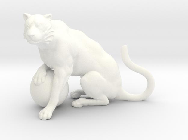 Tiger in White Processed Versatile Plastic