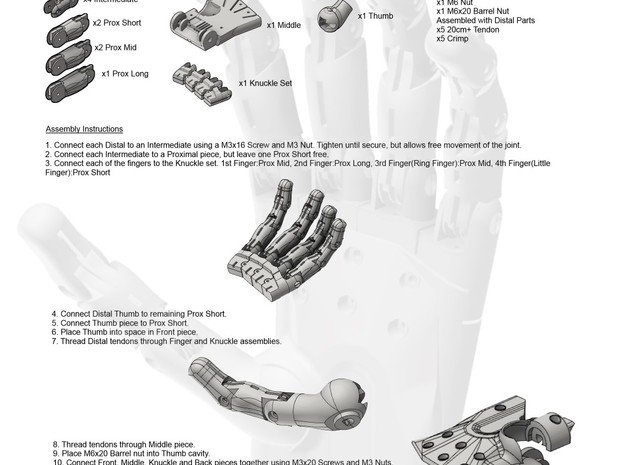 3D Printed Hand Pair in White Natural Versatile Plastic