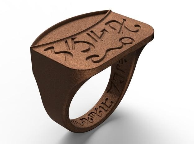 Talisman #14  in Polished Bronze Steel: 9 / 59