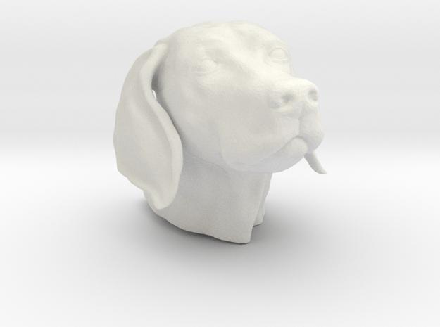 Weimaraner head hollow in White Natural Versatile Plastic