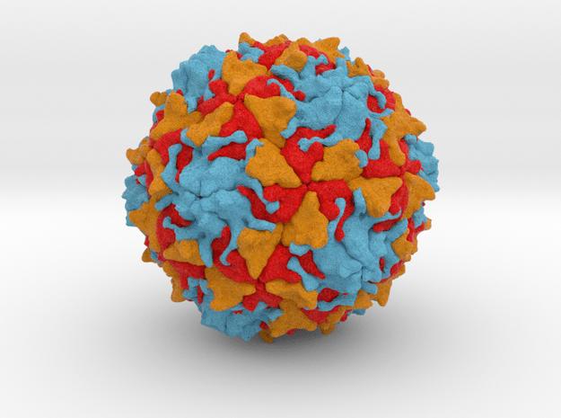 Polio Virus - Large in Full Color Sandstone