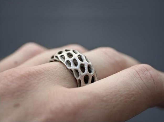 Trous Ring in Natural Silver